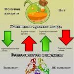 почему фруктоза более вредна, чем глюкоза - инфографик