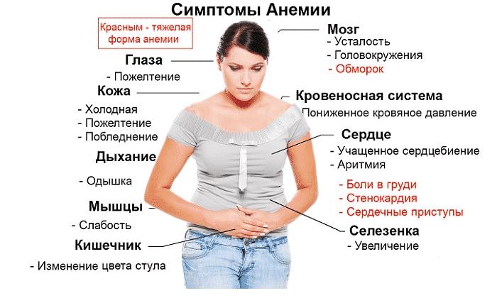 Берлитион показан при анемии