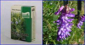 Применение травы козлятника в народной медицине