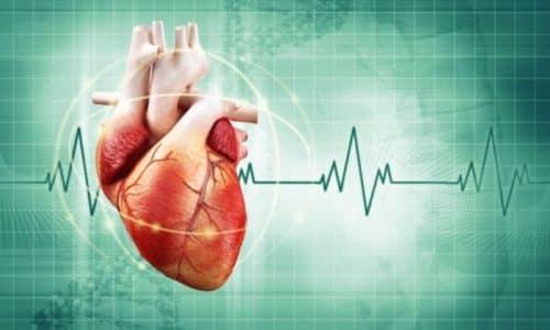 Калий способствует проводимости нервных импульсов, обеспечивает сокращения мышц, за счет чего поддерживается деятельность сердца