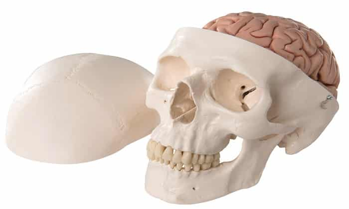 Актовегин назначают при черепно-мозговой травме