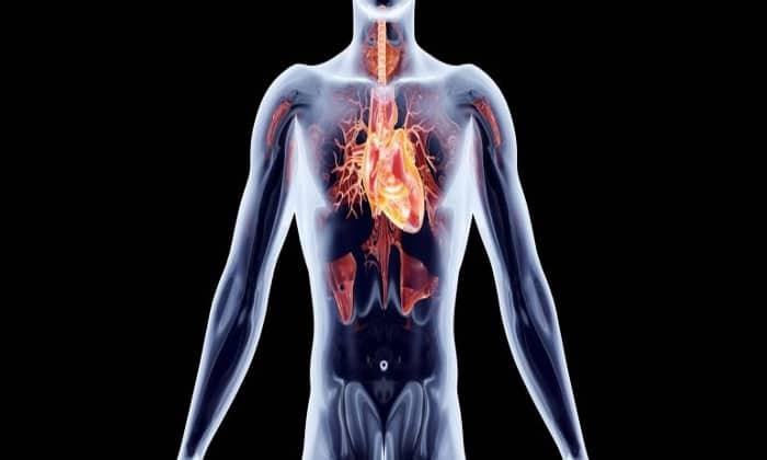 Лекарственное средство используется при сердечно-сосудистых изменениях