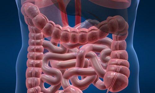 До 90% дозировки лекарства выводится кишечником