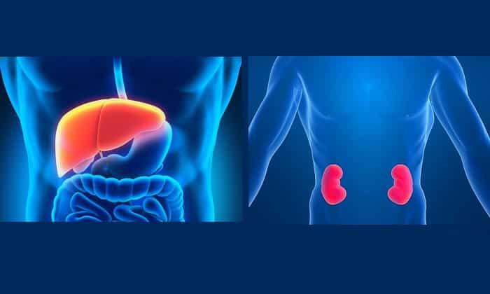 При тяжелых почечных и печеночных нарушениях принимать Гликлазид Канон запрещено