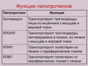 Функции липопротеинов