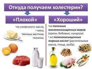 Получение плохого и хорошего холестерина