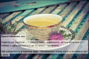 Рецепт чая из расторопши