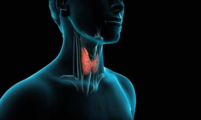 Эндокринные заболевания, вызванные нарушением обмена веществ являются показанием к применению препарата