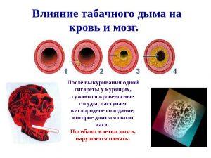 Вред табачного дыма