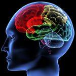 Частичная агенезия мозолистого тела у новорожденного