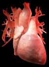 Что делать при повышенном артериальном давлении