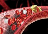 Чем грозит повышение холестерина при беременности?