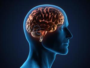 Как чистить сосуды мозга