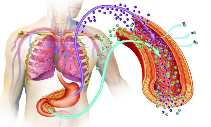 Группа жалоб при нарушении выделения гормона – инсулина