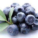 Как применять листья черники для лечения сахарного диабета