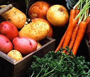 овощи полезные для поджелудочной