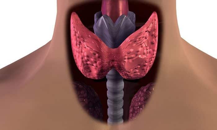 При обострении заболеваний щитовидной железы препарат принимается с осторожностью