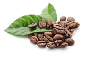Кофе слабит или крепит?