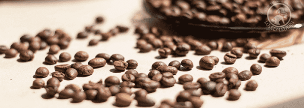 в зернах кофе
