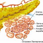 Лечение сахарного диабета 1 типа на ранней стадии: миф или реальность