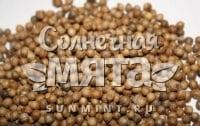 Кориандр Алексеевский 190