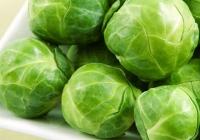 БРЮССЕЛЬСКАЯ КАПУСТА: Полезные свойства. Суп-пюре и салаты из брюссельской капусты.