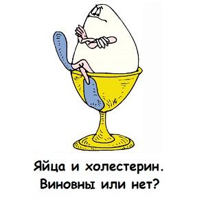 Холестерин а куриных яйцах