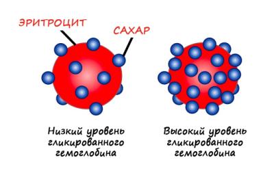 гликированный гемоглобин к беременных