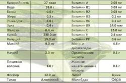 Состав кабачков