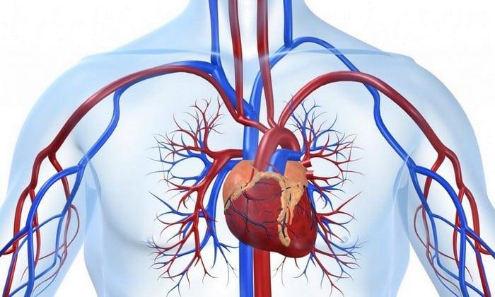 Относительным противопоказанием к приему препарата относятся нарушения кровообращения разной этиологии (заболевания сосудов, аритмия)