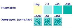 Цветовая шкала (таблица) Диаглюк для расшифровки анализа крови на глюкозу (сахар)