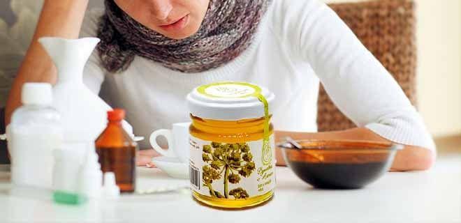 Дягилевый мёд при простуде