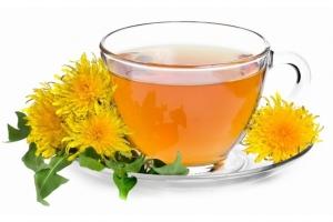 Одуванчиковый чай для лечения болезней