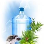 Выбор воды для кулера