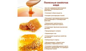 Полезные свойства меда