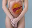 Патогенез хронического панкреатита